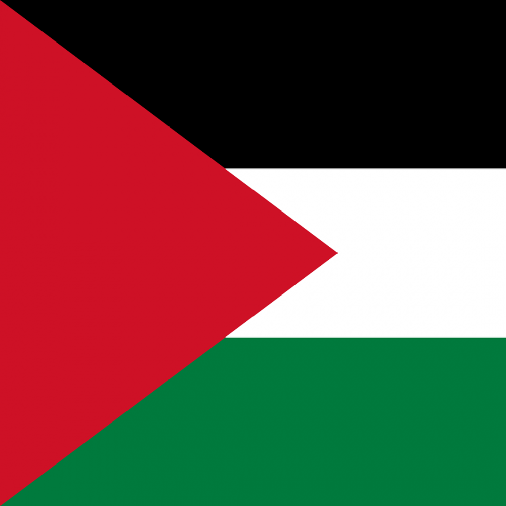Palestine flag profile picture overlay