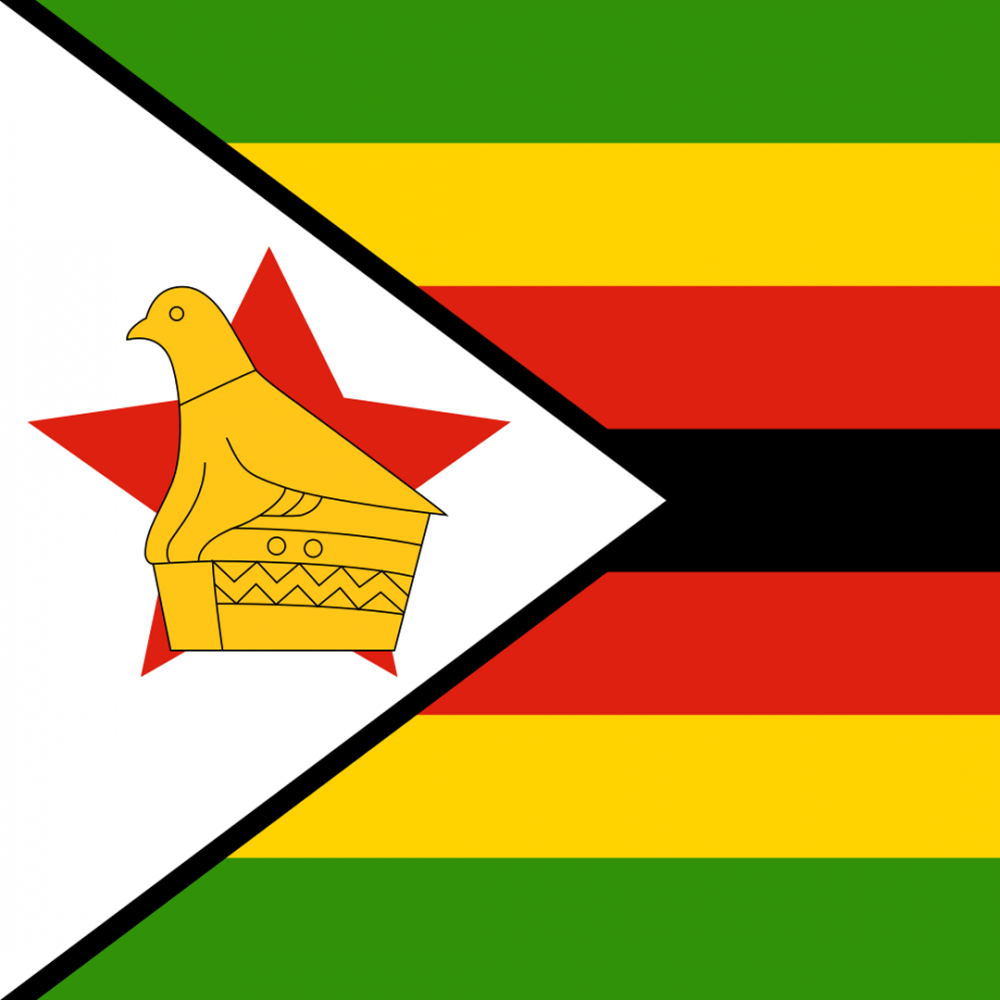Zimbabwe flag profile picture overlay