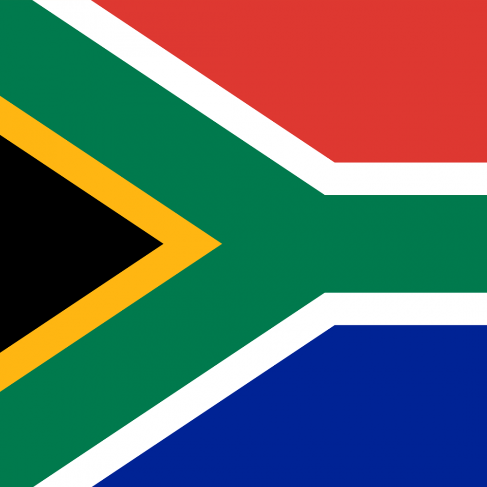 South African flag profile picture overlay