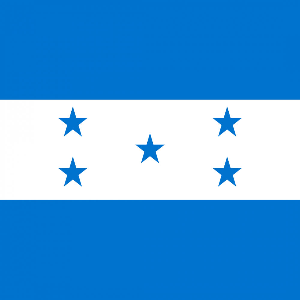 Honduras flag profile picture overlay