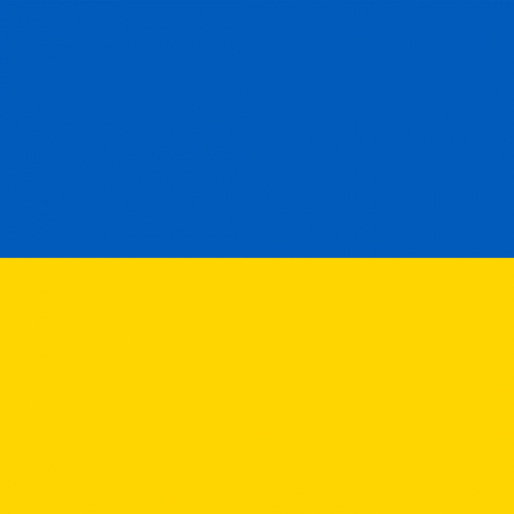 Ukraine flag picture overlay