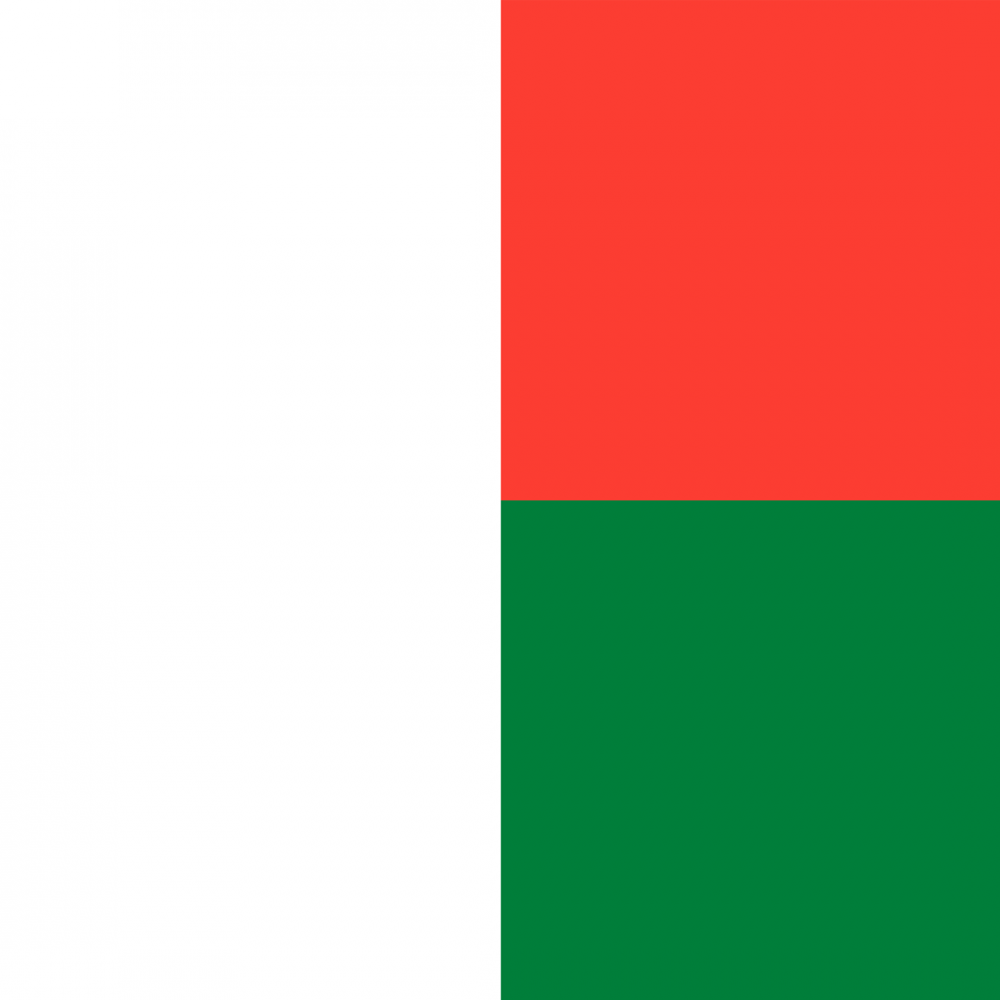 Madagascar flag profile picture overlay
