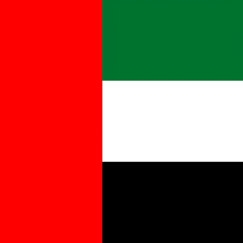 UAE flag profile picture overlay