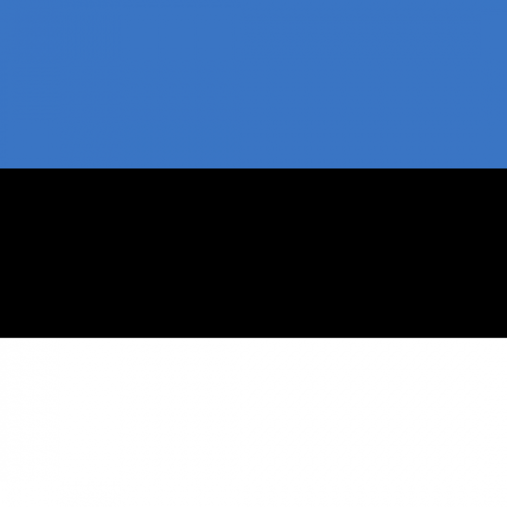 Estonia flag profile picture overlay