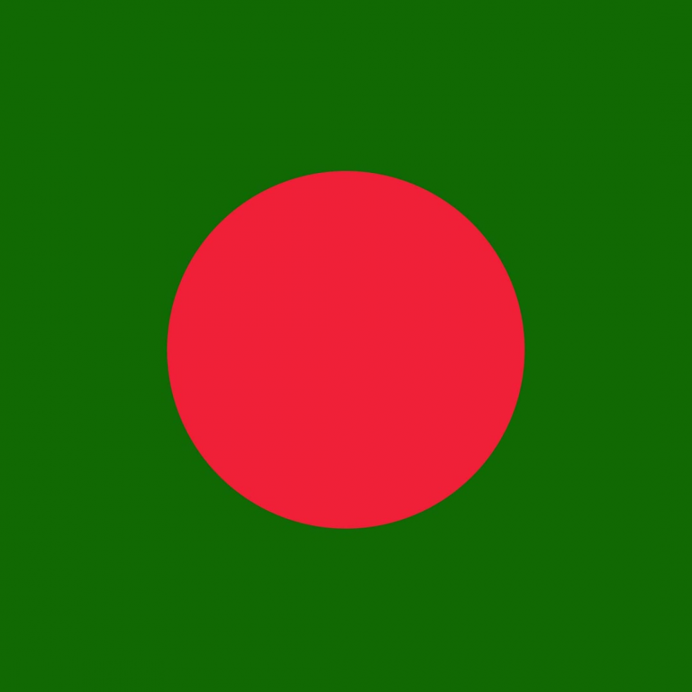 Bangladesh flag profile picture overlay