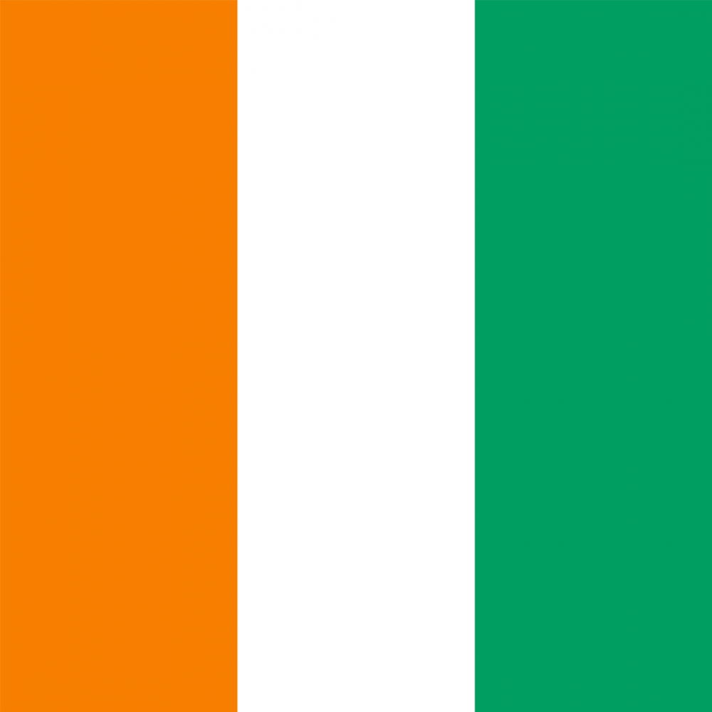 Ivory Coast flag profile picture overlay