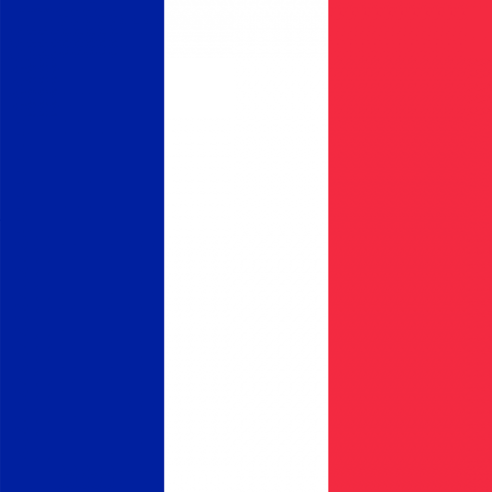 France flag profile picture overlay