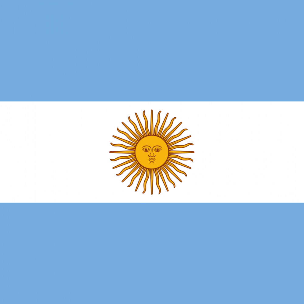Argentina flag profile picture overlay