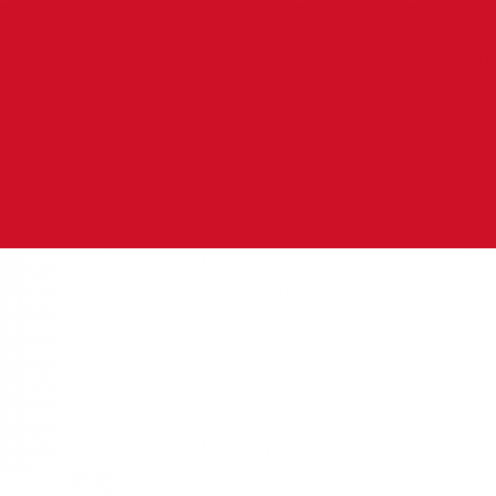 Indonesia flag profile picture overlay