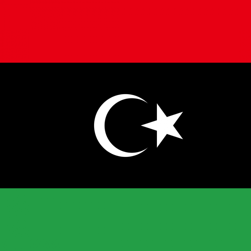 Libya flag profile picture overlay