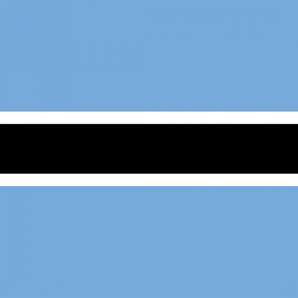 Botswana flag profile picture overlay