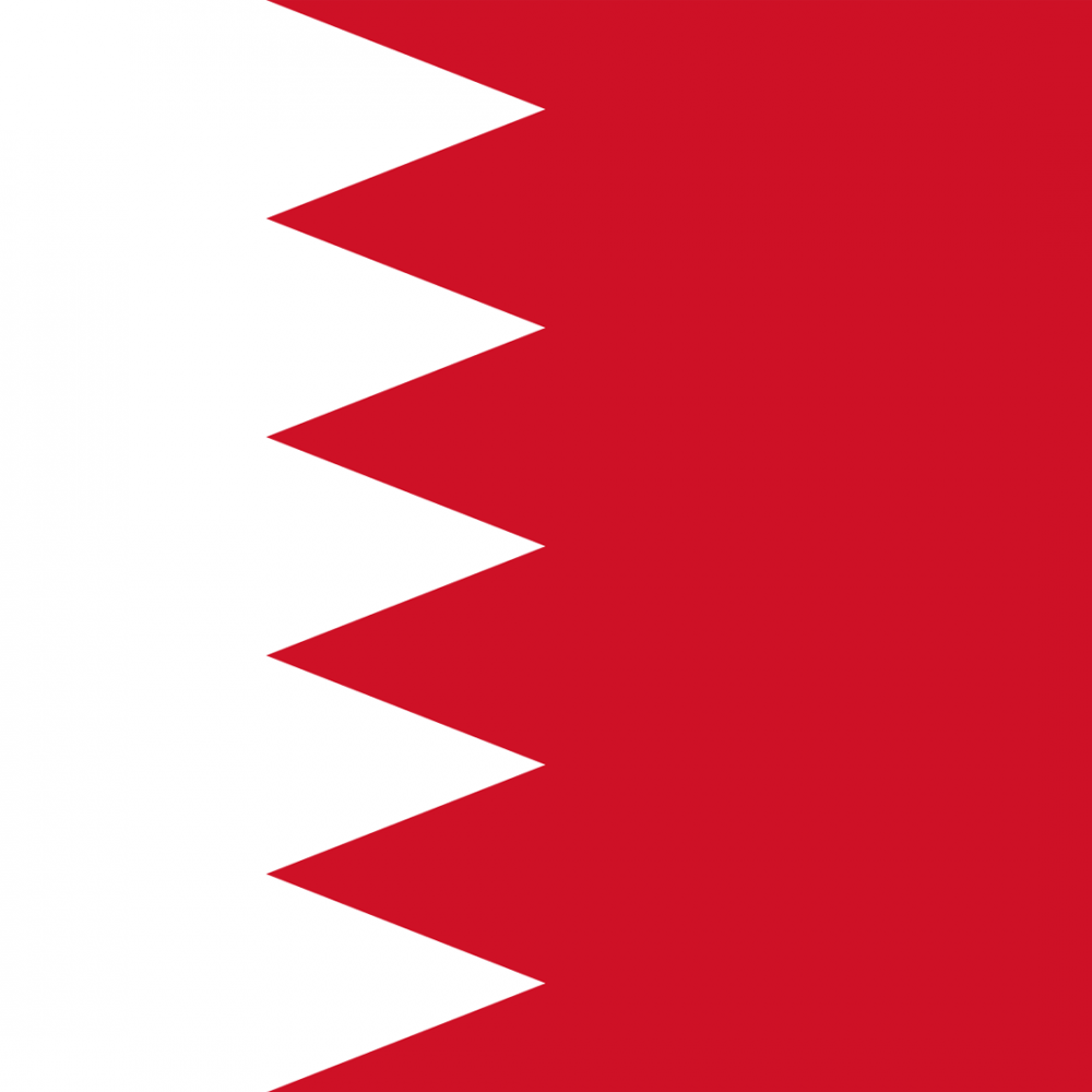Bahrain flag profile picture overlay