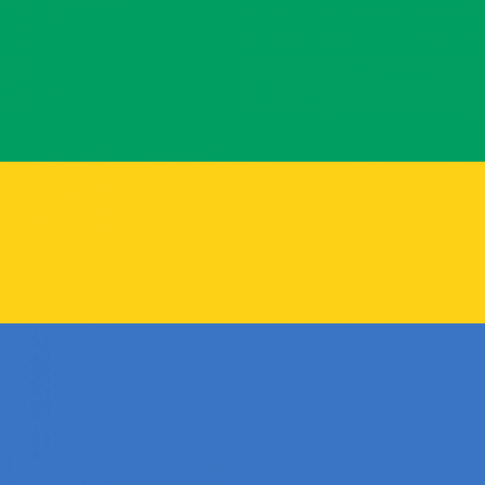 Gabon flag profile picture overlay
