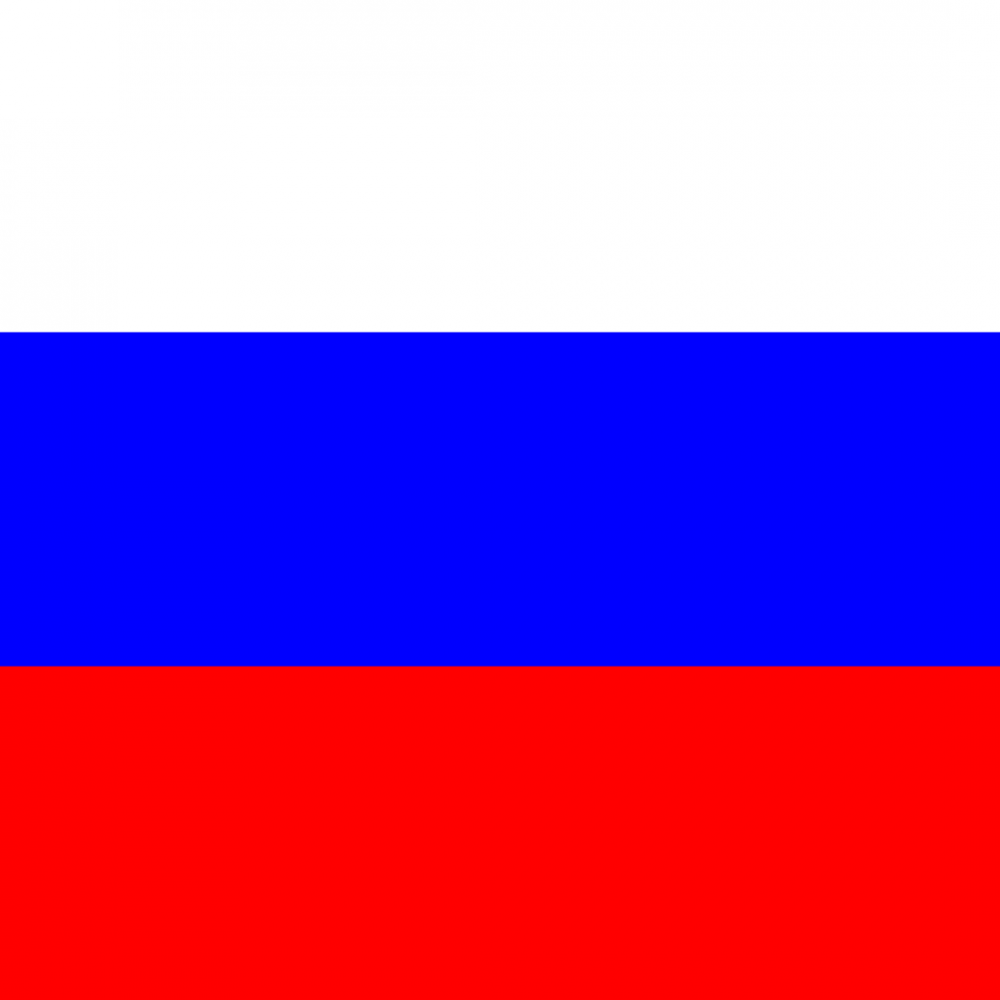 Russian flag profile picture overlay