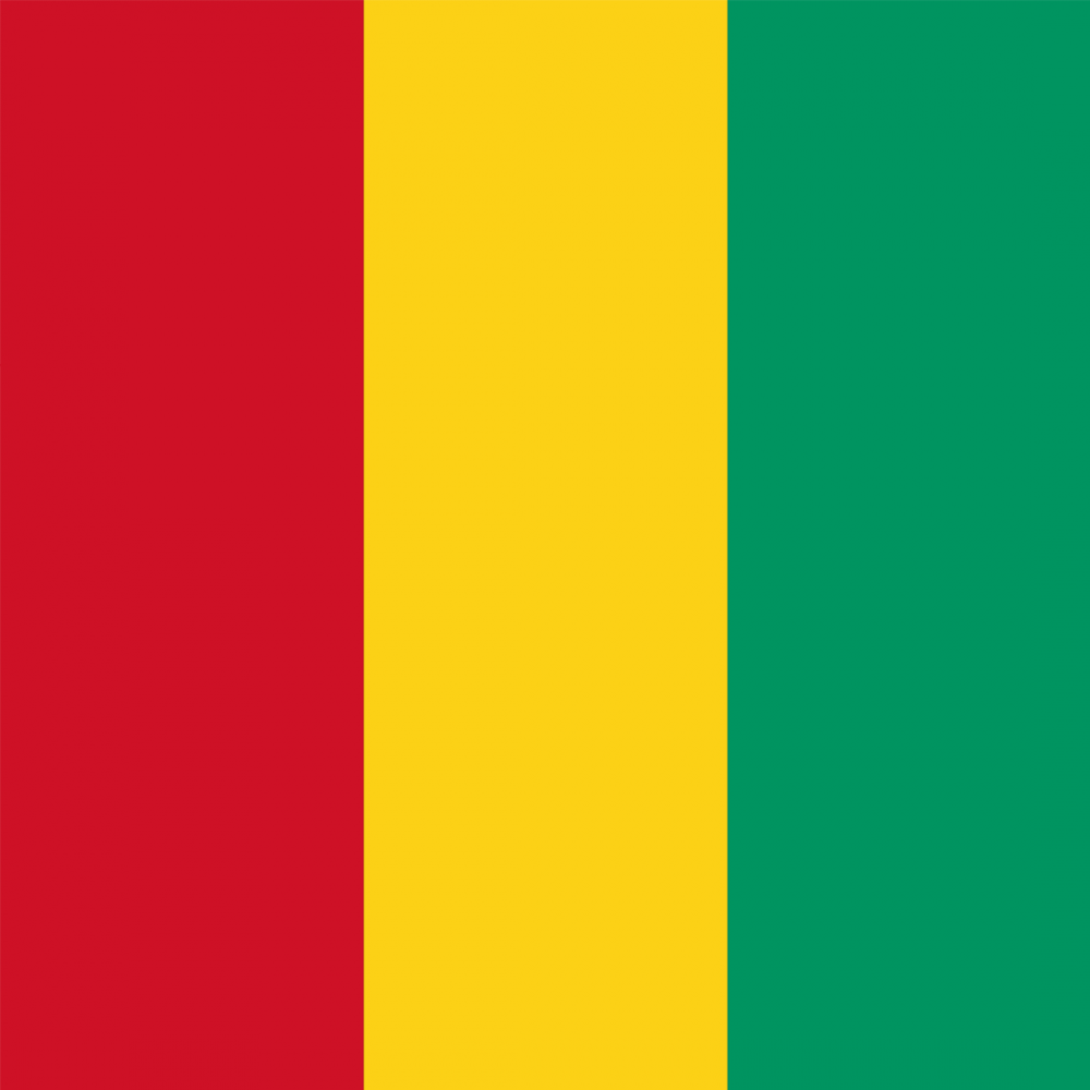 Guinea flag profile picture overlay
