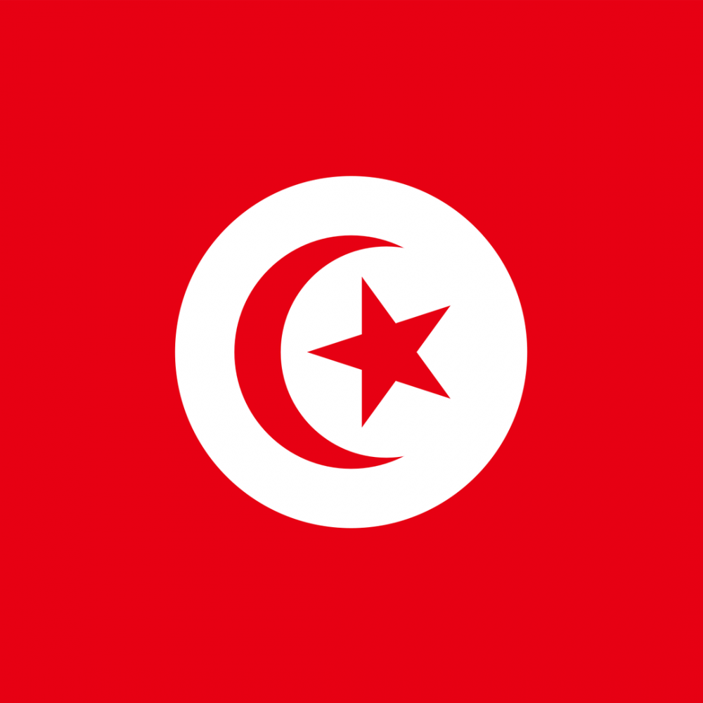 Tunisia flag profile picture overlay
