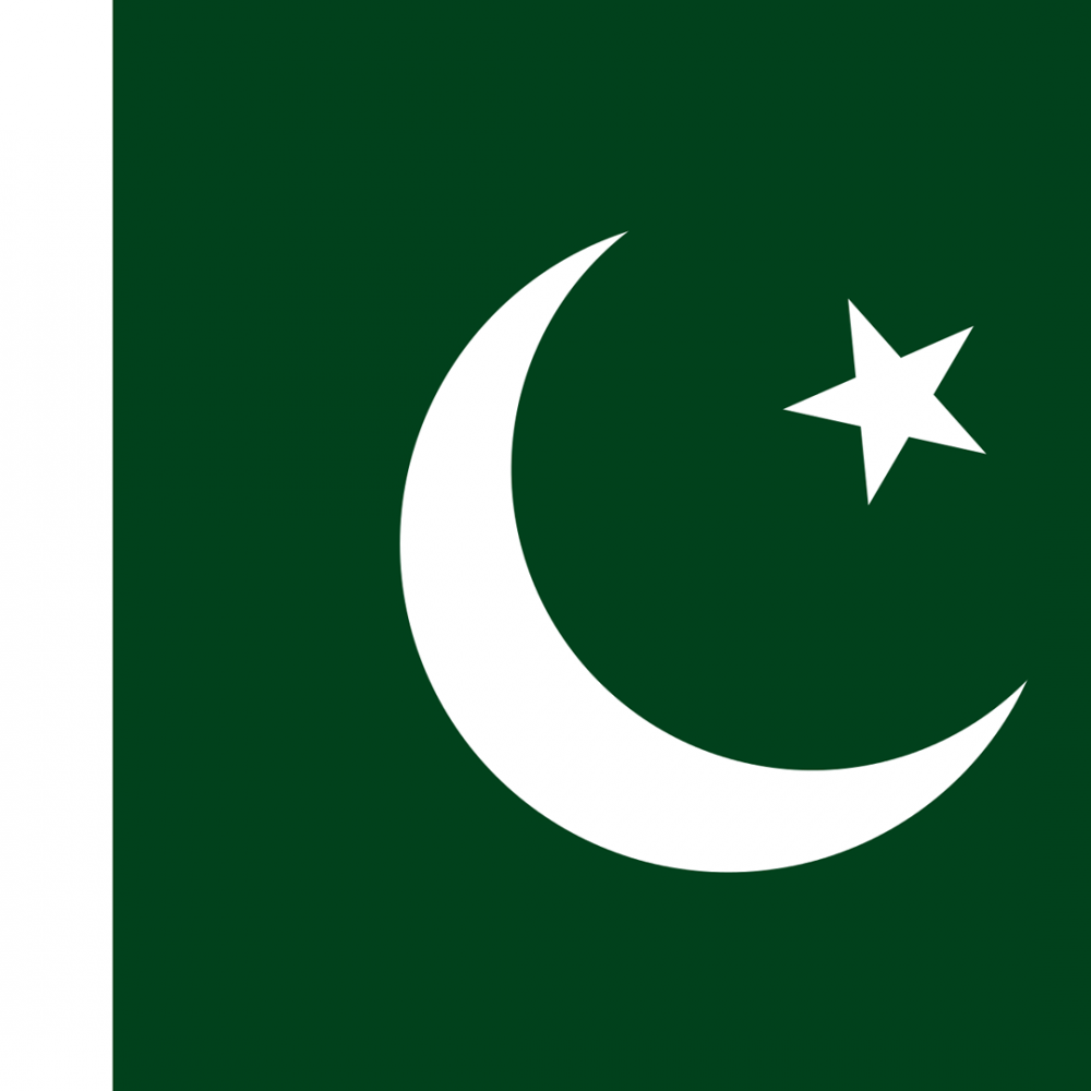 Pakistan flag profile picture overlay
