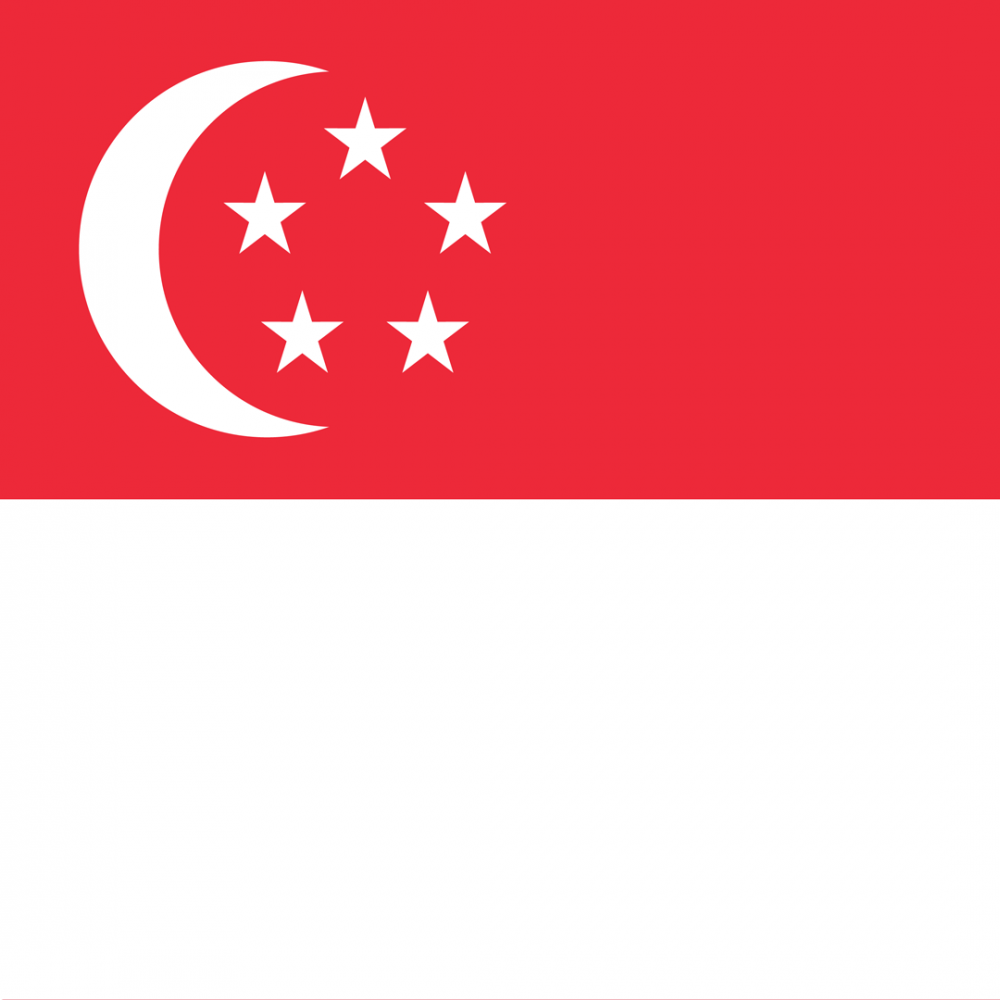 Singapore flag profile picture overlay