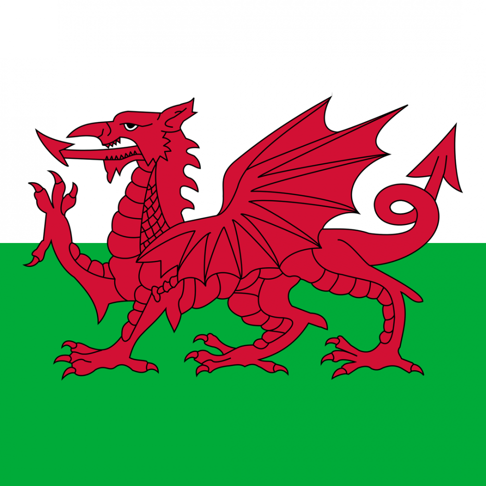 Wales flag profile picture overlay filter