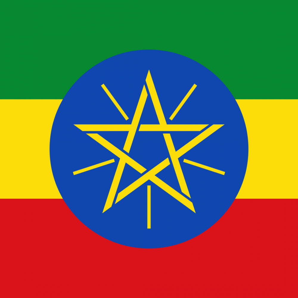 Ethiopia flag profile picture overlay