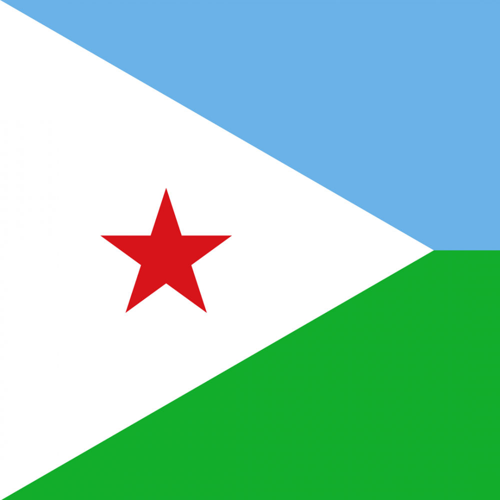 Djibouti flag profile picture overlay
