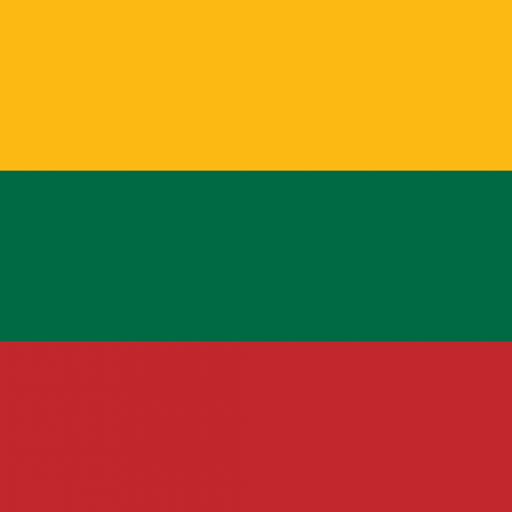 Lithuania flag profile picture overlay