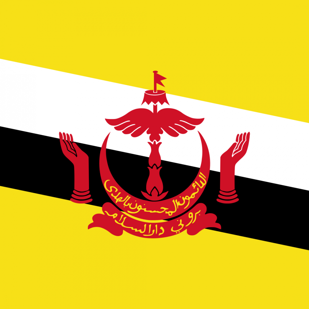 Brunei flag profile picture overlay