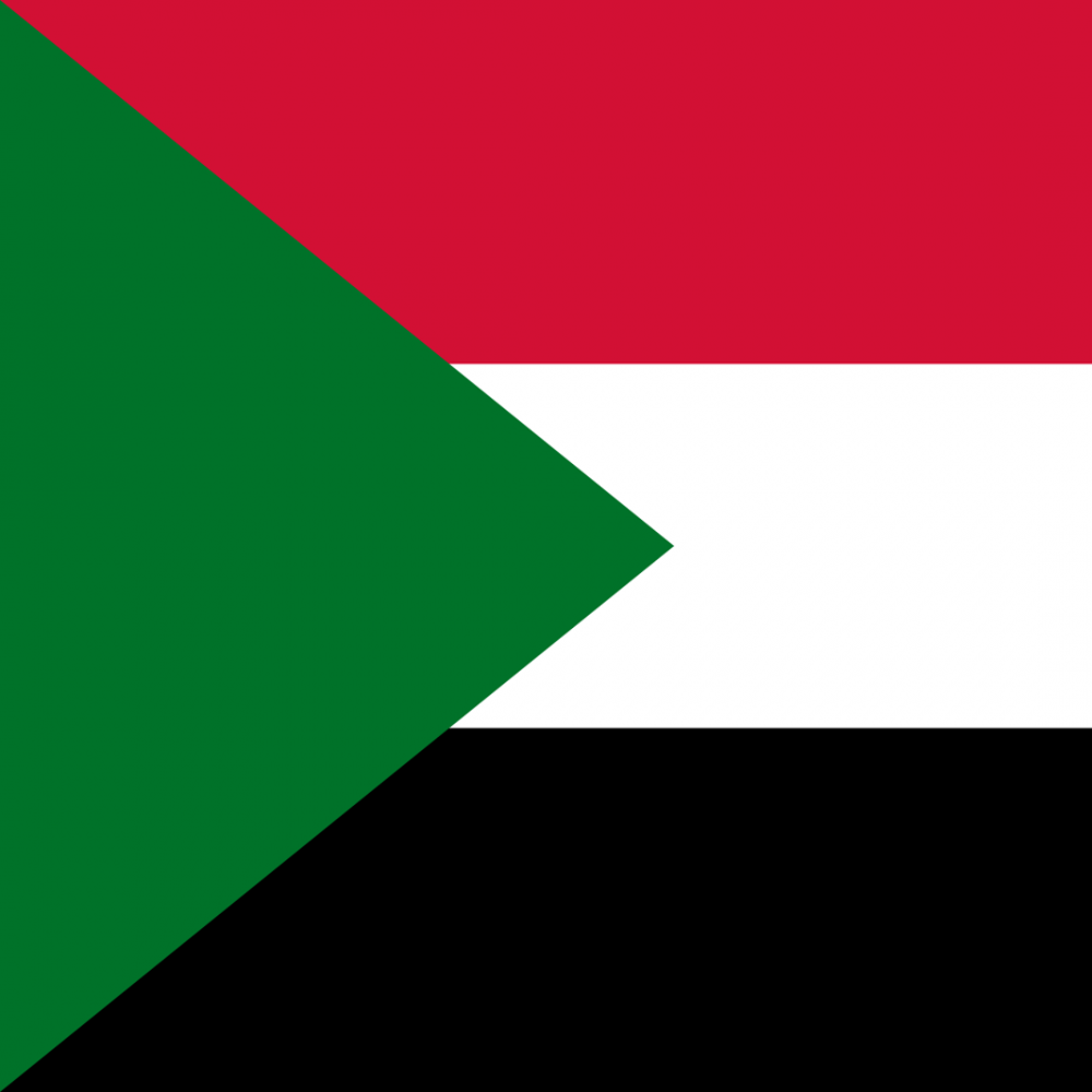 Sudan flag profile picture overlay