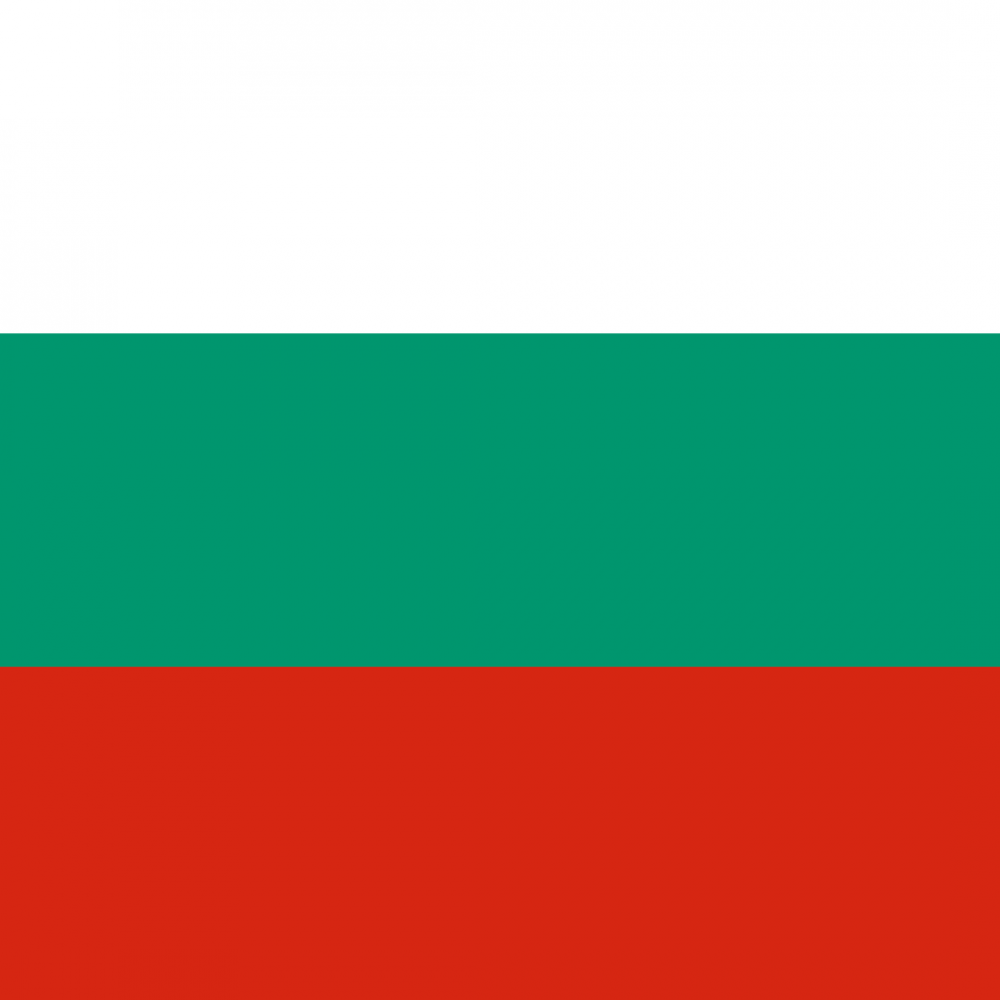 Bulgaria flag profile picture overlay