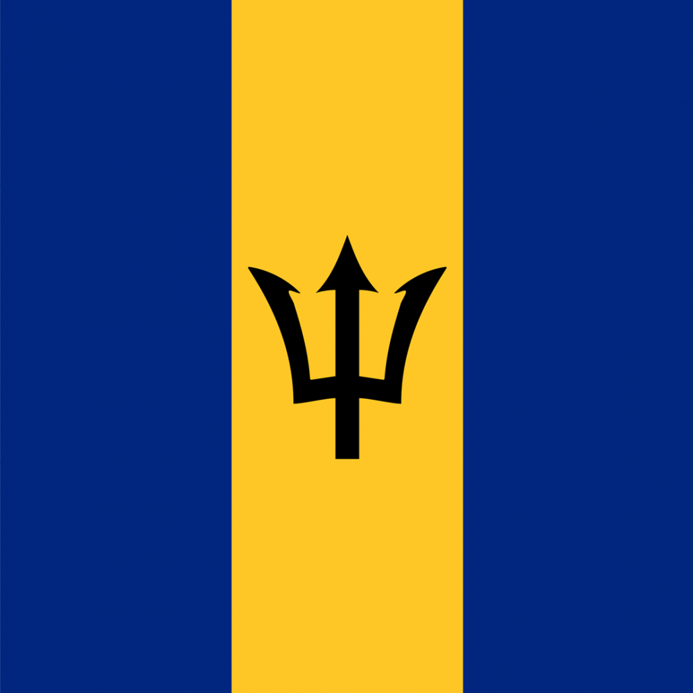 Barbados flag profile picture overlay
