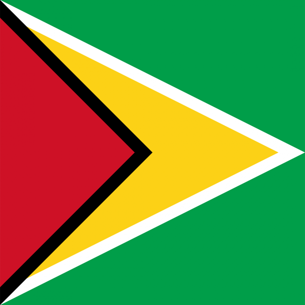 Guyana flag profile picture overlay