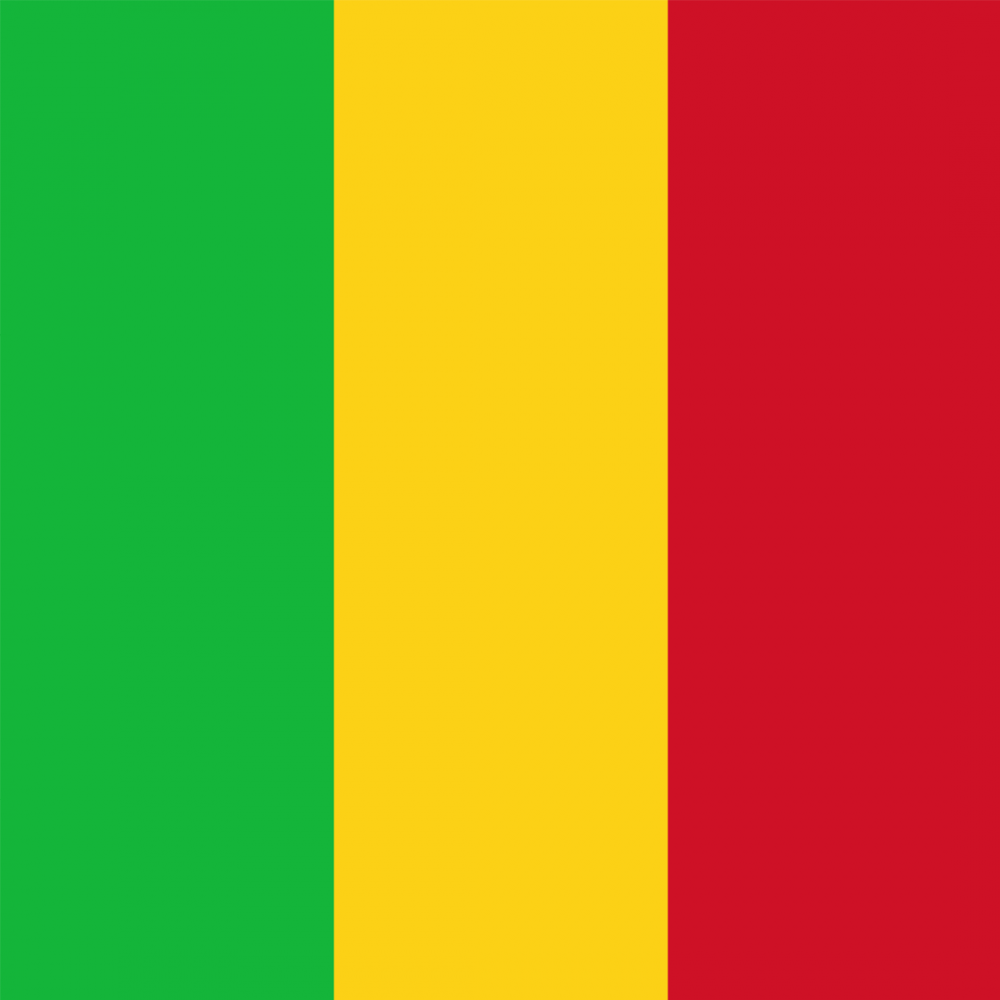 Mali flag profile picture overlay