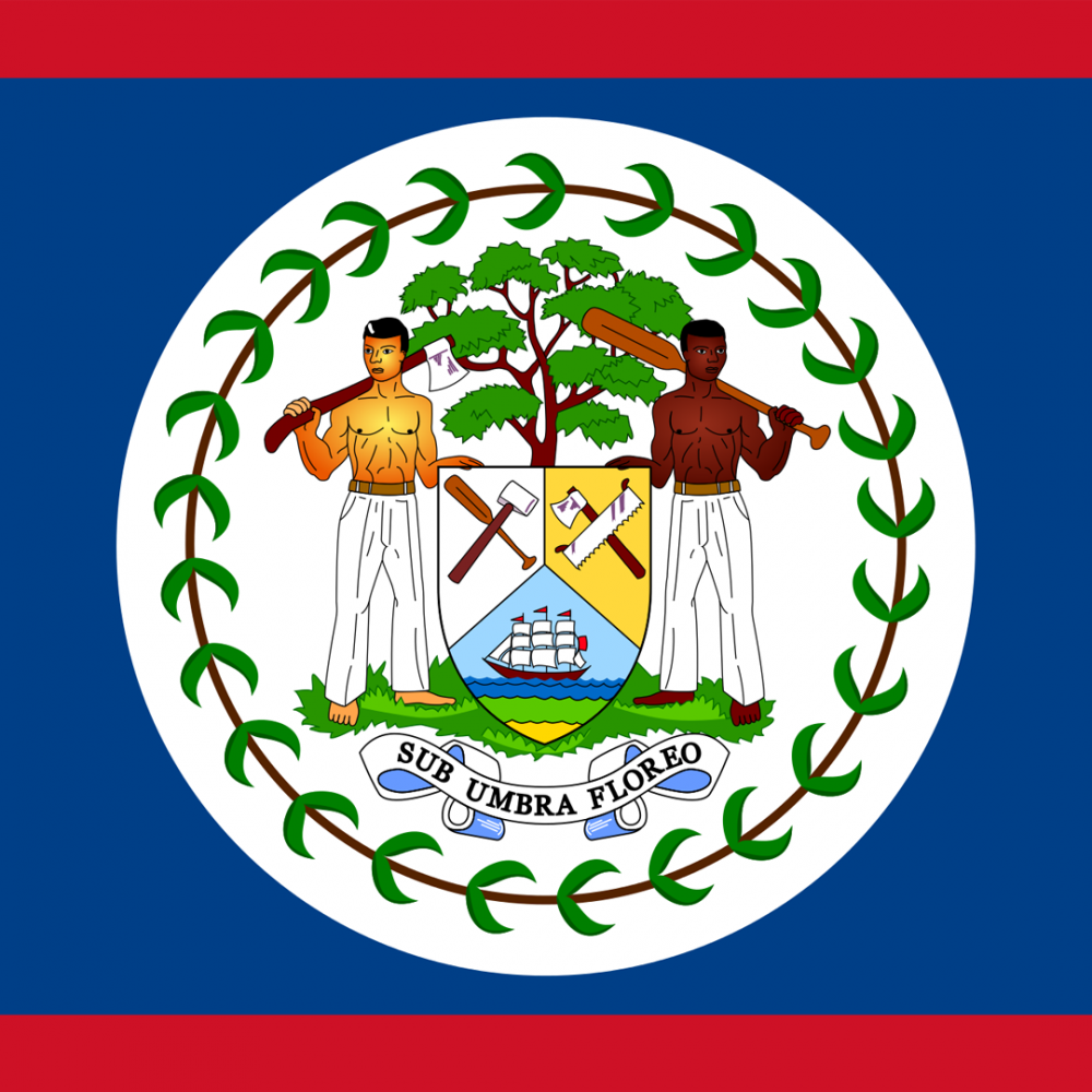 Belize flag profile picture overlay