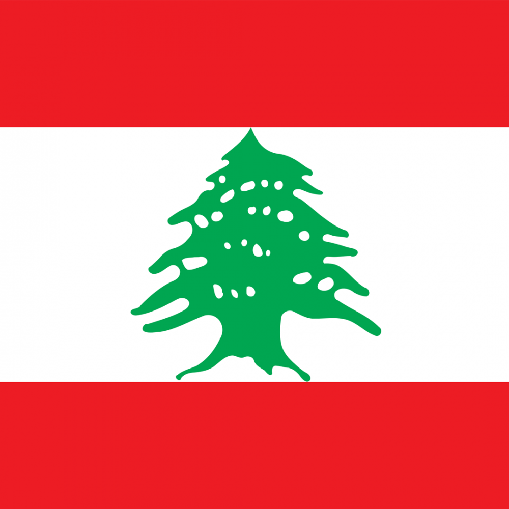 Lebanon flag profile picture overlay