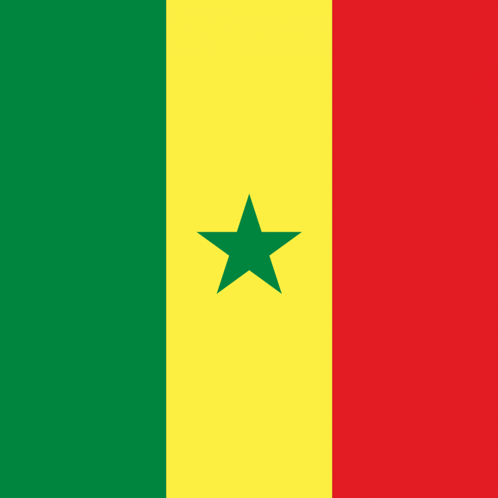 Senegal flag profile picture overlay