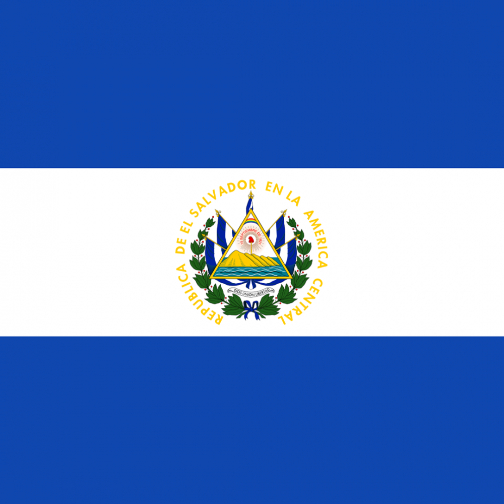 El Salvador flag profile picture overlay