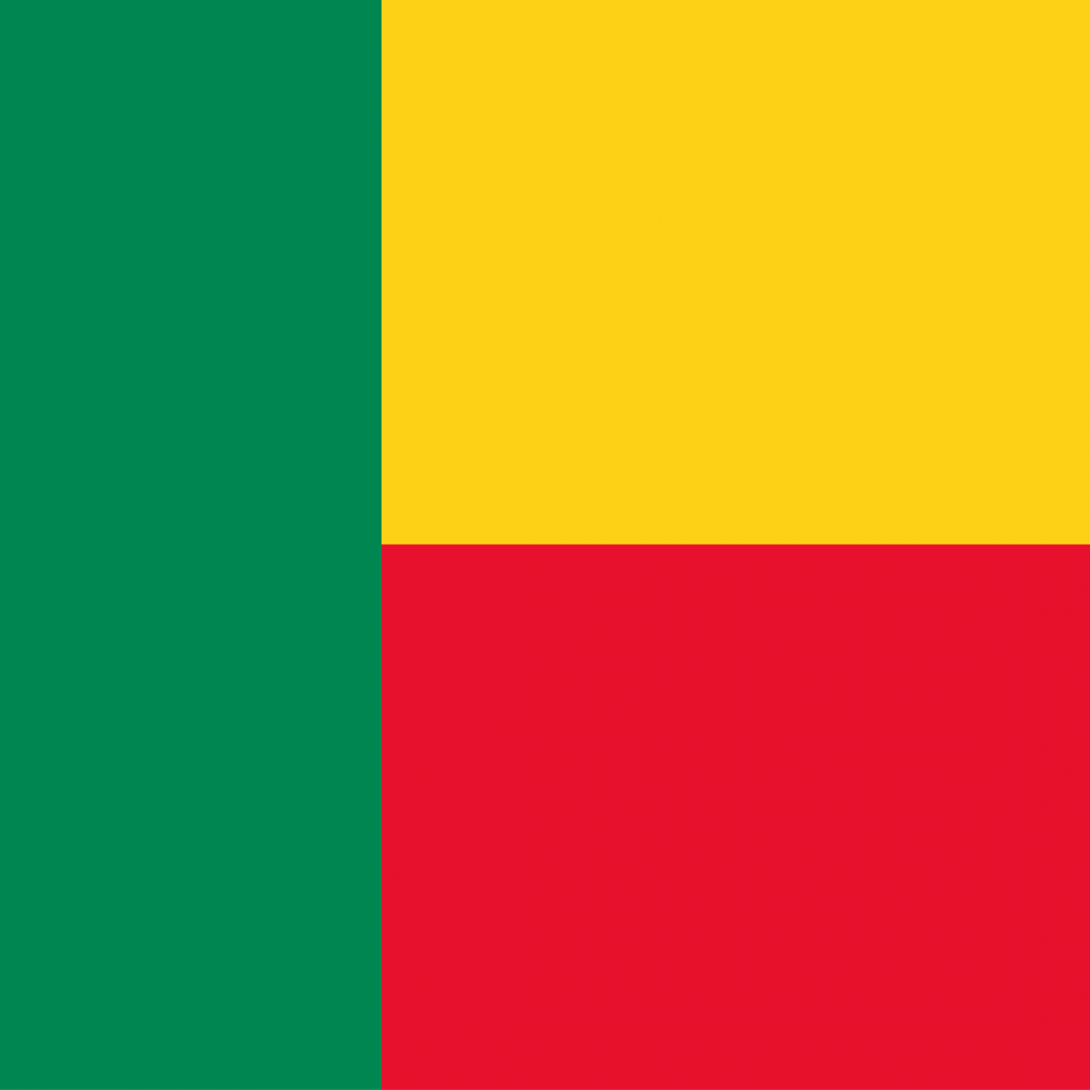 Benin flag profile picture overlay
