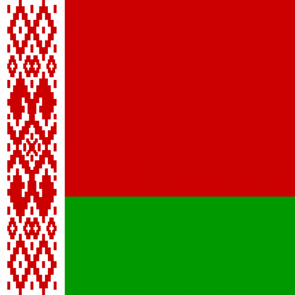 Belarus flag profile picture overlay