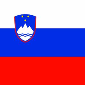 Slovenian flag profile picture overlay