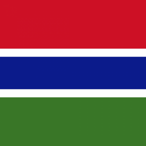Gambia flag profile picture overlay