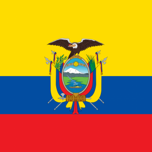 Ecuador flag profile picture overlay