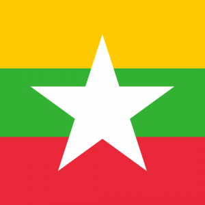 Myanmar flag profile picture overlay
