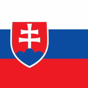 Slovakia flag profile picture overlay