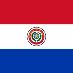Paraguayan flag profile picture overlay