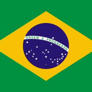 Brazil flag profile picture overlay