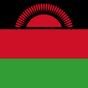 Malawi flag profile picture overlay