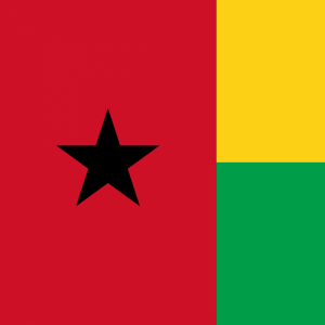 Guinea Bissau flag profile picture overlay