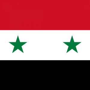 Syria flag profile picture overlay
