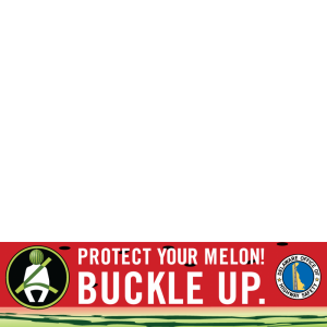 Protect Your Melon