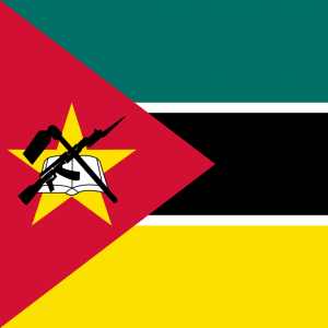 Mozambique flag profile picture overlay